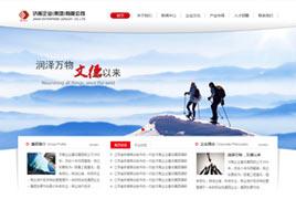 济南综合型集团网站建设案例