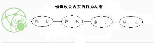 网络蜘蛛爬行原理