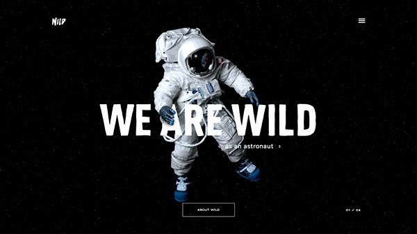 WILD 网页设计合理使用动画效果案例